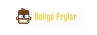Visa alla rabattkoder och erbjudanden hos Roliga Prylar